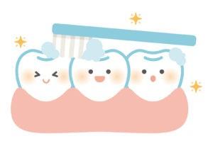 歯ブラシで歯を磨く