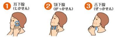 唾液腺をマッサージする女性