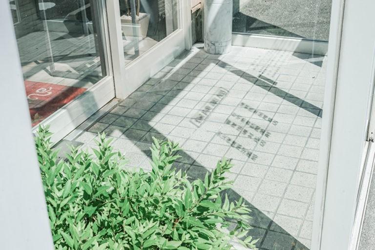 緑の植物と自動ドア
